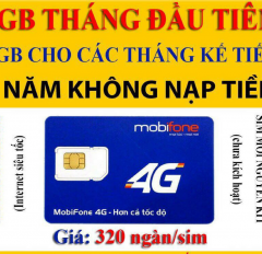 Sim Data Mobi 4G